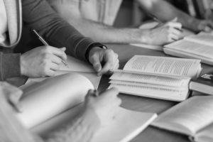 Intellecta - vođeni individualni rad
